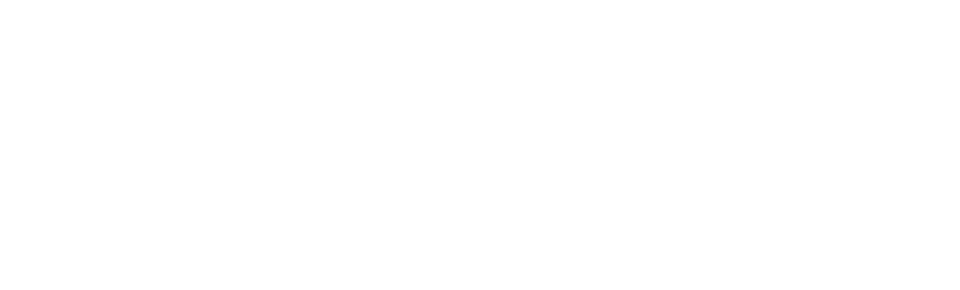business law and franchise counsel